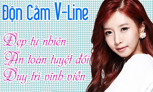 banner-don-cam-han-quoc-2